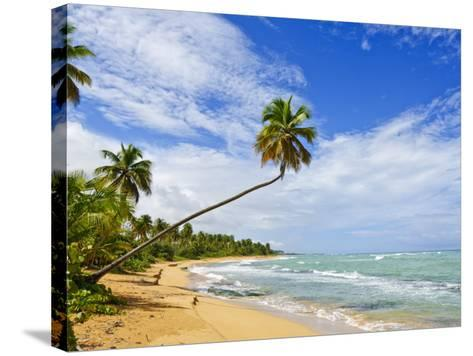 Tres Palmitas Beach, Puerto Rico, West Indies, Caribbean, Central America-Michael DeFreitas-Stretched Canvas Print