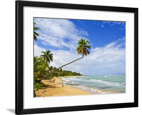 Tres Palmitas Beach, Puerto Rico, West Indies, Caribbean, Central America-Michael DeFreitas-Framed Art Print