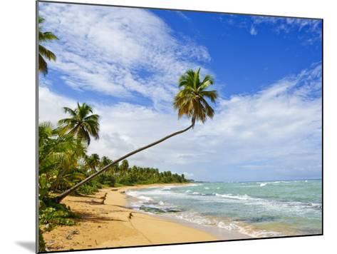 Tres Palmitas Beach, Puerto Rico, West Indies, Caribbean, Central America-Michael DeFreitas-Mounted Photographic Print