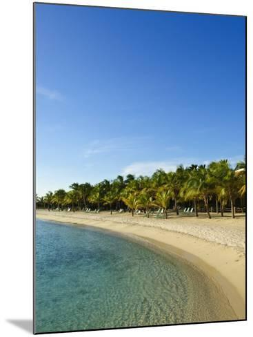 Beach, Bonaire, Netherlands Antilles, West Indies, Caribbean, Central America-Michael DeFreitas-Mounted Photographic Print