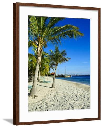 Bonaire, Netherlands Antilles, West Indies, Caribbean, Central America-Michael DeFreitas-Framed Art Print