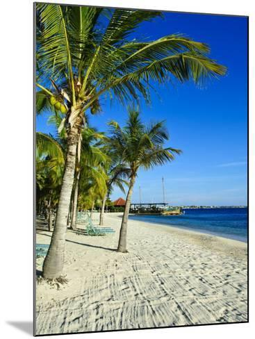 Bonaire, Netherlands Antilles, West Indies, Caribbean, Central America-Michael DeFreitas-Mounted Photographic Print