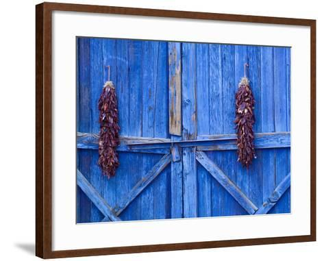 Chilli Ristra Hanging in Old Town Albuquerque, New Mexico-Michael DeFreitas-Framed Art Print
