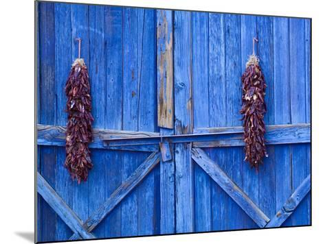 Chilli Ristra Hanging in Old Town Albuquerque, New Mexico-Michael DeFreitas-Mounted Photographic Print