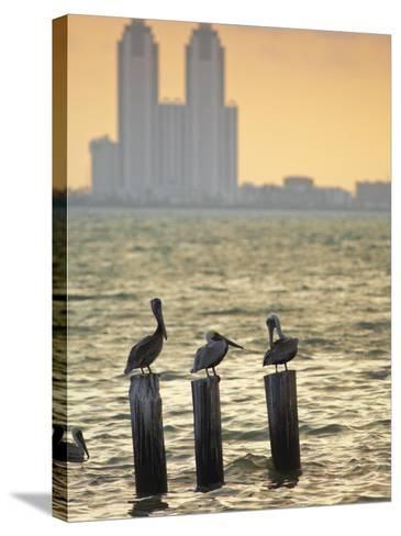San Padre Island, Texas, United States of America, North America-Michael DeFreitas-Stretched Canvas Print