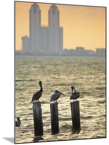 San Padre Island, Texas, United States of America, North America-Michael DeFreitas-Mounted Photographic Print