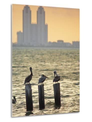 San Padre Island, Texas, United States of America, North America-Michael DeFreitas-Metal Print
