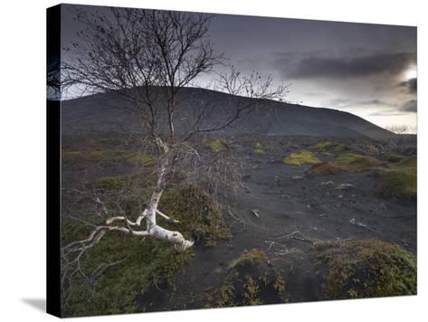 Desolate Black Ash Landscape at the Foot of Hverfjall Volcano, Myvatn, Northern Iceland-Patrick Dieudonne-Stretched Canvas Print