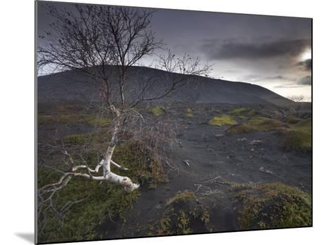 Desolate Black Ash Landscape at the Foot of Hverfjall Volcano, Myvatn, Northern Iceland-Patrick Dieudonne-Mounted Photographic Print
