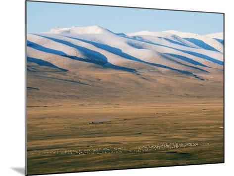 Sheep Grazing on the Plains in Bayanbulak, Xinjiang Province, China, Asia-Christian Kober-Mounted Photographic Print