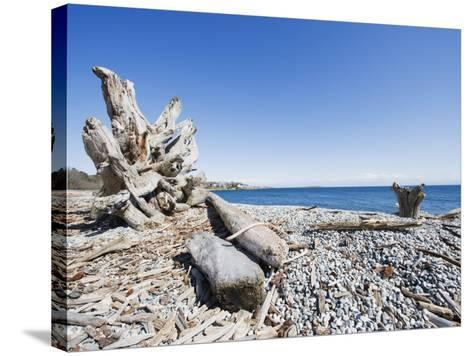 Beach on the Strait of Juan De Fuca, Victoria, Vancouver Island, British Columbia, Canada-Christian Kober-Stretched Canvas Print