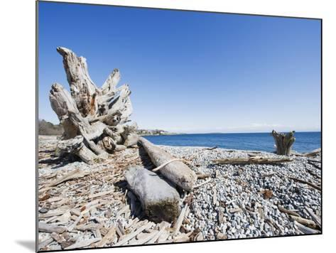 Beach on the Strait of Juan De Fuca, Victoria, Vancouver Island, British Columbia, Canada-Christian Kober-Mounted Photographic Print