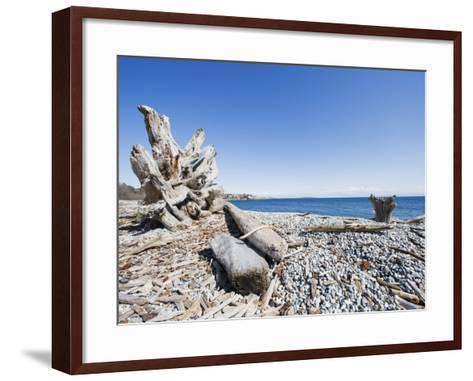 Beach on the Strait of Juan De Fuca, Victoria, Vancouver Island, British Columbia, Canada-Christian Kober-Framed Art Print