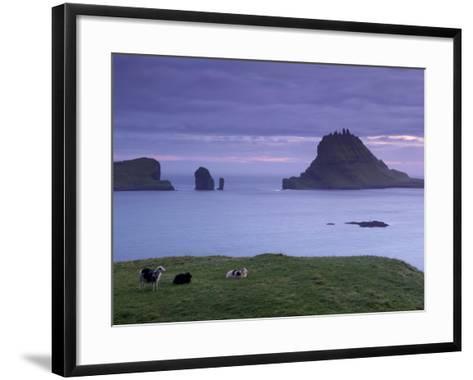 Tindholmur Island Rising to 262 M, and Drangarnir Natural Arch at Sunset, with Sheep, from Vagar-Patrick Dieudonne-Framed Art Print