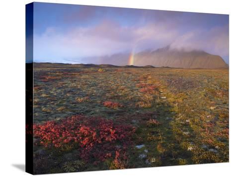 Autumn Colours and Rainbow over Illuklettar Near Skaftafellsjokull Glacier Seen in the Distance-Patrick Dieudonne-Stretched Canvas Print
