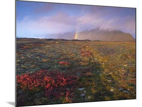 Autumn Colours and Rainbow over Illuklettar Near Skaftafellsjokull Glacier Seen in the Distance-Patrick Dieudonne-Mounted Photographic Print