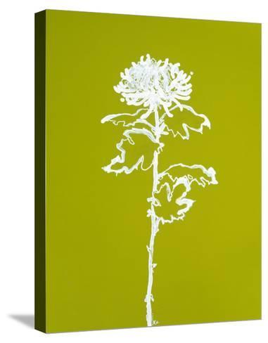 Chrysanthemum I-Filippo Ioco-Stretched Canvas Print