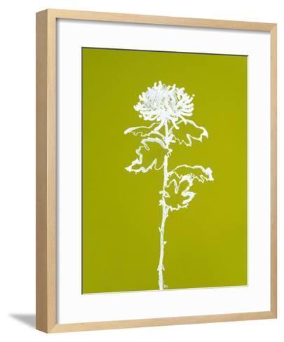 Chrysanthemum I-Filippo Ioco-Framed Art Print