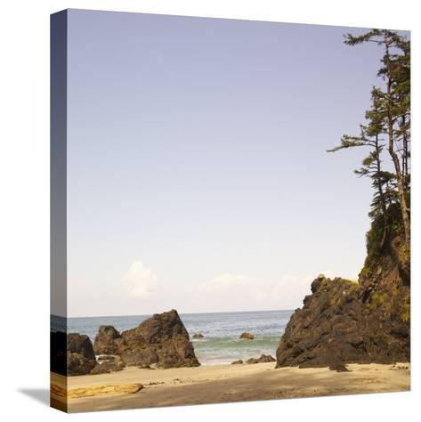 Rocky Beach Scene, Cape Scott, Vancouver, Bc, Canada-Adam Blasberg-Stretched Canvas Print