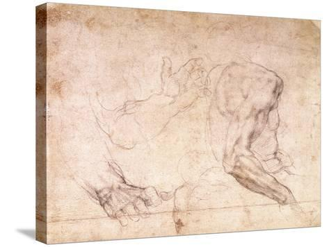 Studies of Hands and an Arm-Michelangelo Buonarroti-Stretched Canvas Print
