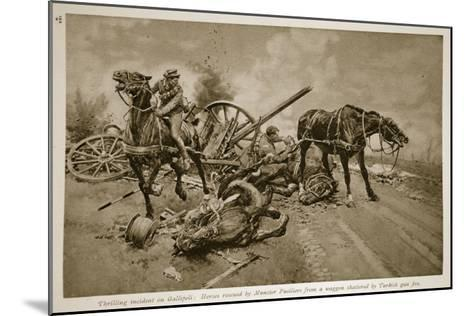 Gallipoli: Horses Rescued by Munster Fusiliers from a Waggon Shattered by Turkish Gun Fire, 1914-19--Mounted Giclee Print