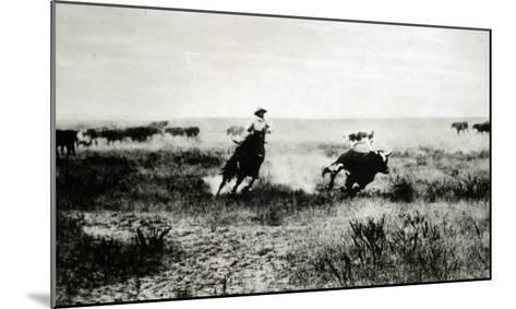 Cowboy on Horseback Lassooing a Calf-L^a^ Huffman-Mounted Giclee Print