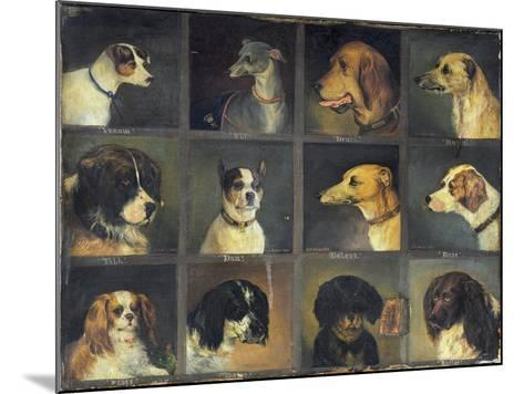 Twelve Favourite Dogs, 1883-Edwin Frederick Holt-Mounted Giclee Print