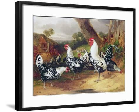 Cockerels in a Landscape-William Joseph Shayer-Framed Art Print
