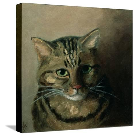 A Head Study of a Tabby Cat-Louis Wain-Stretched Canvas Print