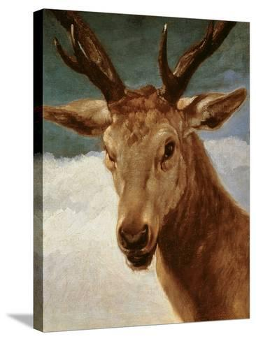 Head of a Stag, 1634-Diego Velazquez-Stretched Canvas Print