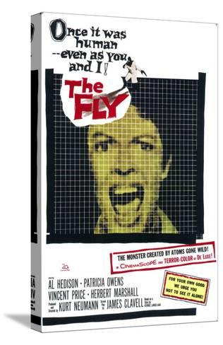 The Fly, 1958--Stretched Canvas Print