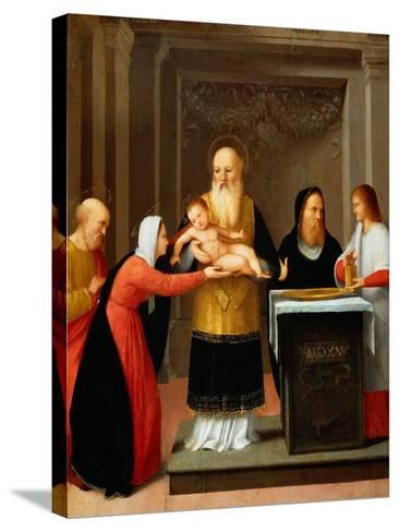 Presentation in the Temple-Bernardino Ferrari-Stretched Canvas Print