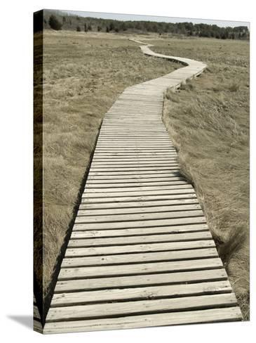 Boardwalk across a Tidal Marsh Leading to a Wooden Area at a Wildlife Sanctuary-John Nordell-Stretched Canvas Print