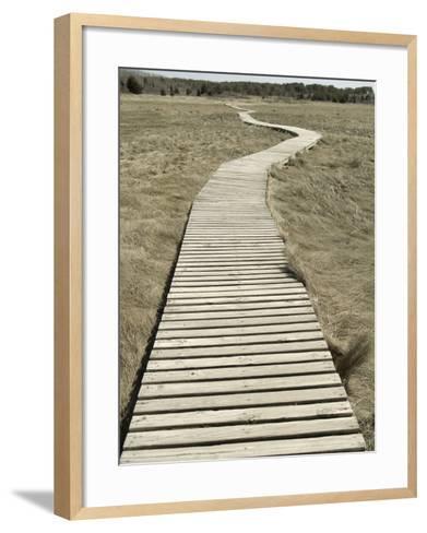 Boardwalk across a Tidal Marsh Leading to a Wooden Area at a Wildlife Sanctuary-John Nordell-Framed Art Print