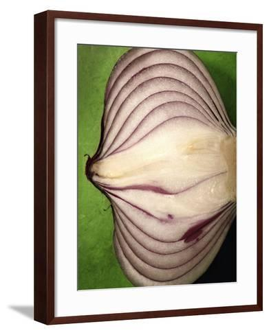 Close-Up of Half of a Red Onion-Tina Chang-Framed Art Print