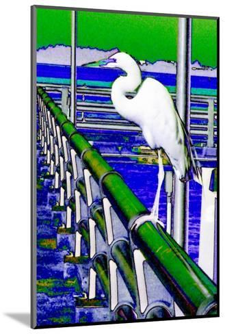 Egret Perched, Florida-Rich LaPenna-Mounted Giclee Print