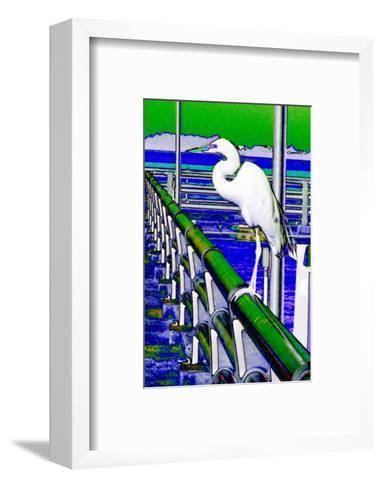 Egret Perched, Florida-Rich LaPenna-Framed Art Print