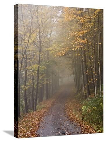 Rural Road in Autumn at Dawn, Vermont-John Churchman-Stretched Canvas Print