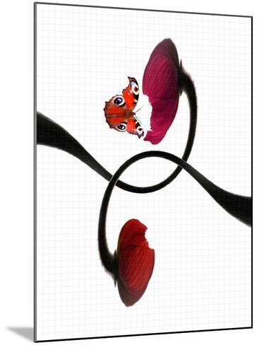 A Butterfly and Two Poppy Flowers with Geometry Paper as the Background-Abdul Kadir Audah-Mounted Photographic Print