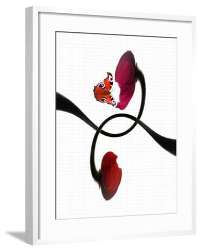 A Butterfly and Two Poppy Flowers with Geometry Paper as the Background-Abdul Kadir Audah-Framed Art Print