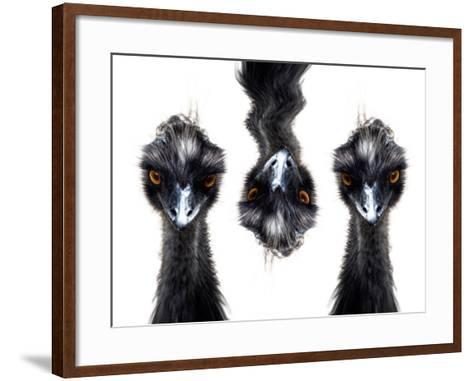 Three Emus-Abdul Kadir Audah-Framed Art Print