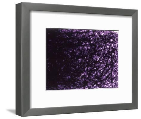Abstract Image in Black and Purple-Daniel Root-Framed Art Print