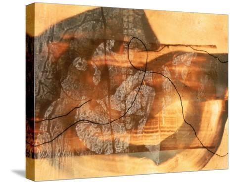 Abstract Image in Beige, Brown, and Black-Daniel Root-Stretched Canvas Print
