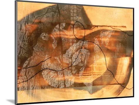 Abstract Image in Beige, Brown, and Black-Daniel Root-Mounted Giclee Print