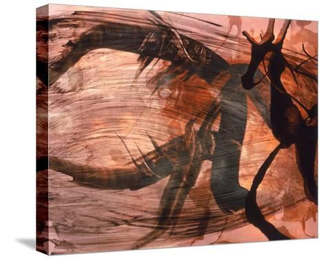 Abstract Image in Brown and Black-Daniel Root-Stretched Canvas Print