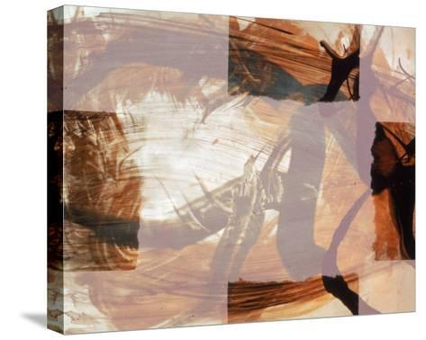 Abstract Image in Brown and White-Daniel Root-Stretched Canvas Print
