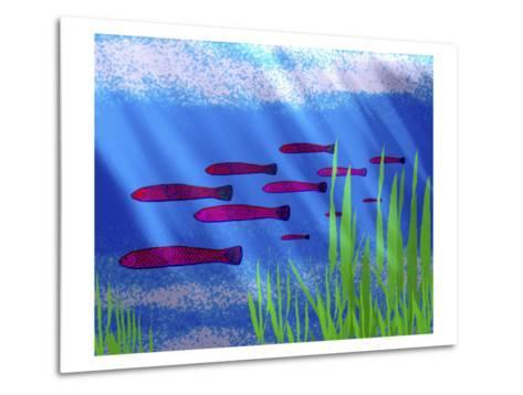 Purple Fish in Calm Blue Water with Seagrass-Rich LaPenna-Metal Print