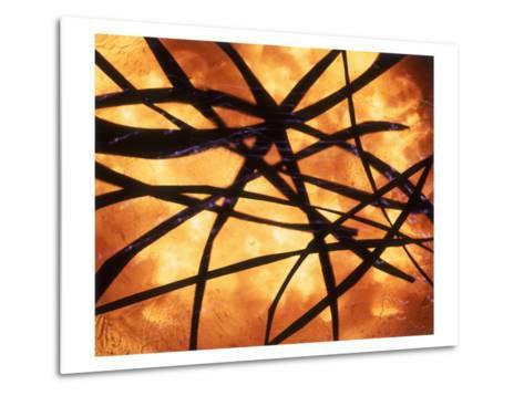 Abstract Image in Yellow and Black-Daniel Root-Metal Print