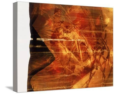 Abstract Image in Red-Daniel Root-Stretched Canvas Print