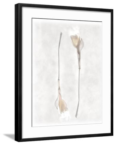 Still Life of Two Flowers-Joyce Tenneson-Framed Art Print